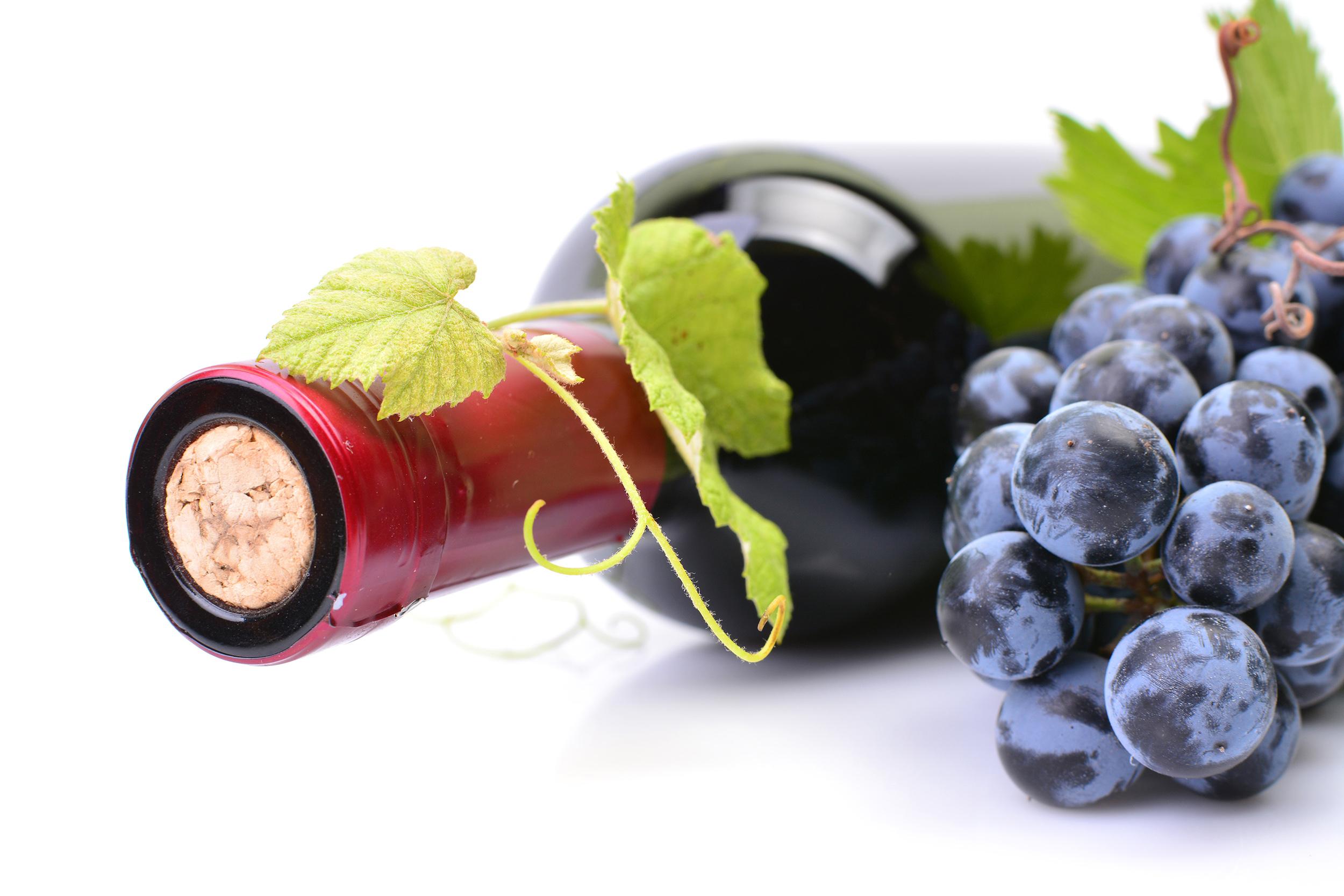 conception etiquette de vin
